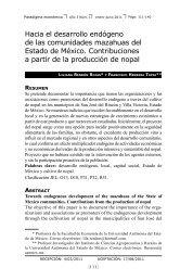 Hacia el desarrollo endógeno de las comunidades mazahuas del ...