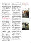 Satsa på Sjöfart - Sveriges Redareförening - Page 5