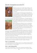 Helaflex - Scientific Communication AB - Page 2