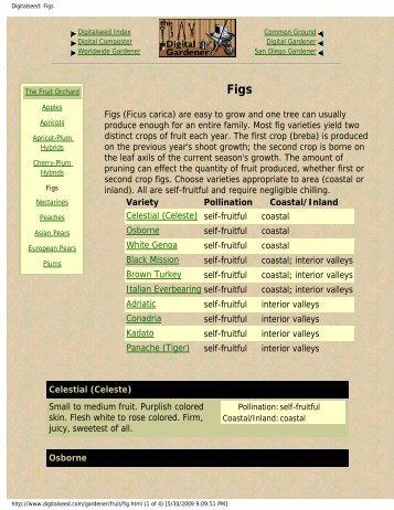 Digitalseed: Figs - Figs 4 Fun