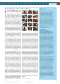 Strony rekomendowane - Wuala - Page 7