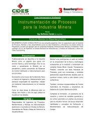 Instrumentación de Procesos para la Industria Minera - CIDES ...