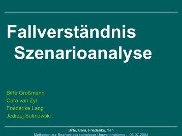 Fallverständnis Szenarioanalyse