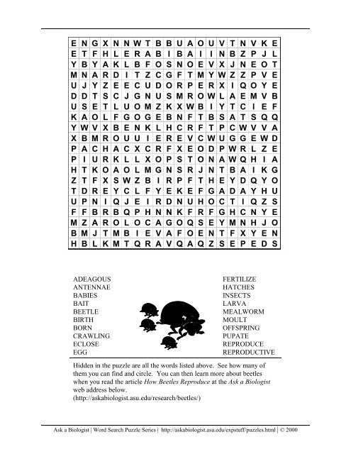 Word Search Pdf Ask A Biologist