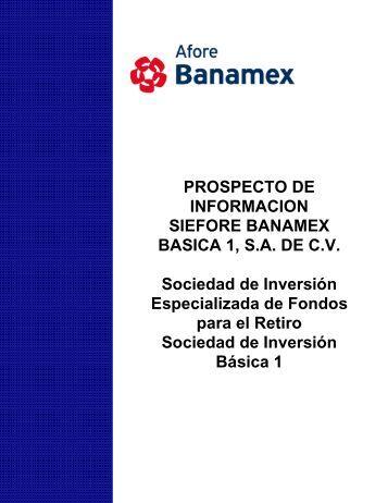 PROSPECTO DE INFORMACION SIEFORE BANAMEX BASICA 1 ...