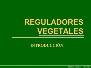 Reguladores Veg - Introduccion_2007.pdf
