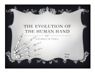 THE EVOLUTION OF THE HUMAN HAND