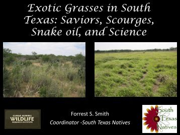 Exotic Grasses in South Texas - Caesar Kleberg Wildlife Research ...