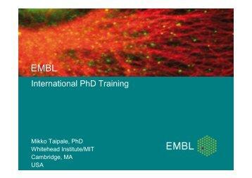 International PhD Training