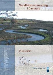 Vandløbsrestaurering i Danmark - Naturstyrelsen