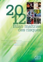 Téléchargez le Bilan maîtrise des risques 2012 - CEA