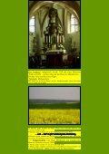 Mechernicher Burgenweg - Kunstwanderungen - Seite 2