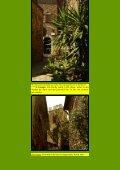 To S12 Saturnia - Kunstwanderungen - Page 7