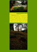 Eichstätt – Dollnstein - Kunstwanderungen - Page 3