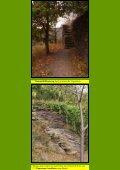 Ahr VII Panoramaweg 3 - Kunstwanderungen - Seite 2