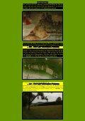 Lemberg - Kunstwanderungen - Seite 3