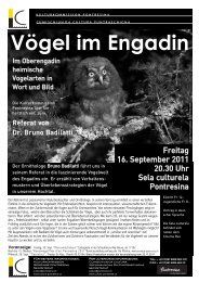 download Flyer Voegel im Engadin - Kunstwege