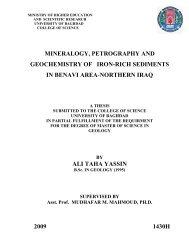 mineralogy, petrography and geochemistry of iron-rich sediments in ...