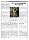 holon-netzwerk - KursKontakte - Page 3
