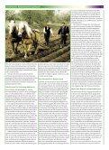 PDF-Version (255.73 KB) - KursKontakte - Page 2