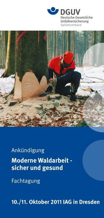 Moderne Waldarbeit - sicher und gesund