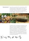 Thurgauer Kompostführer - beim Verband KVA Thurgau - Seite 7