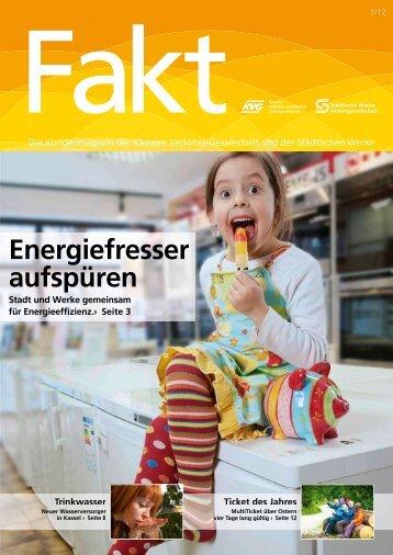 Fakt 01/2012 - Städtische Werke AG