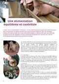 4 VOLET CIV PORC - La-viande.fr - Page 4