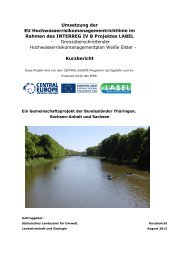 Umsetzung der EU Hochwasserrisikomanagementrichtlinie ... - LABEL