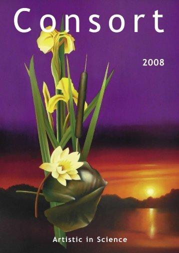 2008 - Labochema