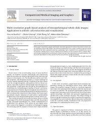 Multi-resolution graph-based analysis of histopathological whole ...