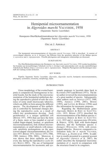 hemipenial microornamentation in Algyroides marchi ... - Lacerta