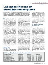 PDF Ladungssicherung im europäischen Vergleich