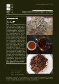 Newsletter Nr. 13 vom 11. September 2010 - Länggass-Tee - Seite 3