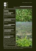 Newsletter Nr. 24 vom 13. August 2011 - Länggass-Tee - Seite 2