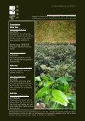 Newsletter Nr. 24 vom 13. August 2011 - Länggass-Tee - Seite 3