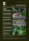 Newsletter Nr. 24 vom 13. August 2011 - Länggass-Tee - Seite 4