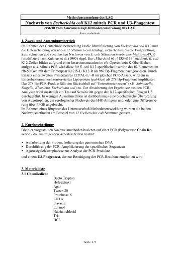 Nachweis von Escherichia coli K12 mittels PCR und U3-Phagentest