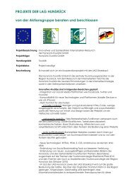 Innovativer und barrierefreier Internetseiten ... - LAG Hunsrück
