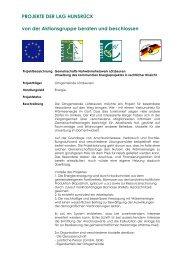 Umsetzung des kommunalen Energieprojektes in ... - LAG Hunsrück