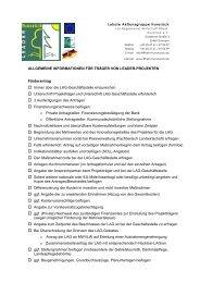 Informationen und Hinweise für Träger von Leader ... - LAG Hunsrück