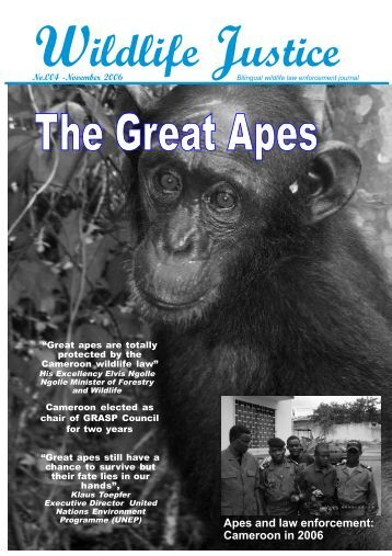 Apes and law enforcement: Cameroon in 2006 - LAGA