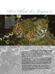 Katalog - Tropenstation | La Gamba