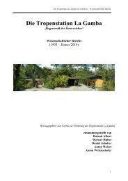 WISSENSCHAFTLICHER BERICHT - Tropenstation | La Gamba