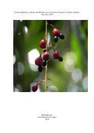 Guía de plántulas y árboles identificados en La Estación Tropical La ...