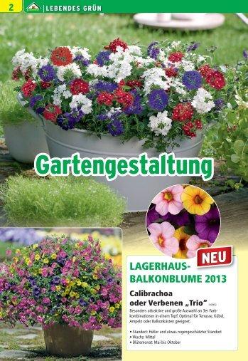 Lebendes Grün, Pflanzgefäße, Gartendeko, Gewächshäuser ...
