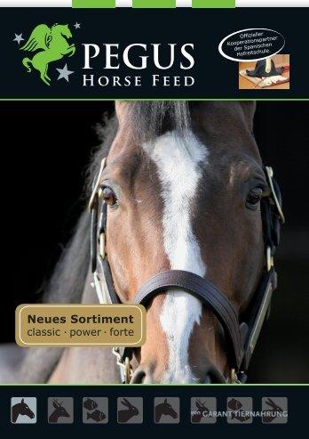 Pferd - Raiffeisen Lagerhaus Hippach