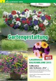RVS Jahreskatalog - Raiffeisen Lagerhaus Hippach - Page 4