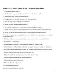 Anatomy I, Dr. Nelson Chapter 23 part 1, Digestion, Study Guide