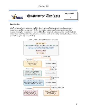 Qualitative Analysis Procedure